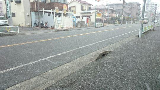 今日も橋本は雪