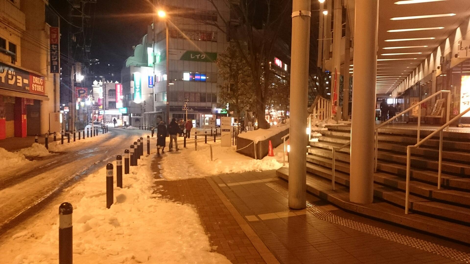 大雪の後の橋本
