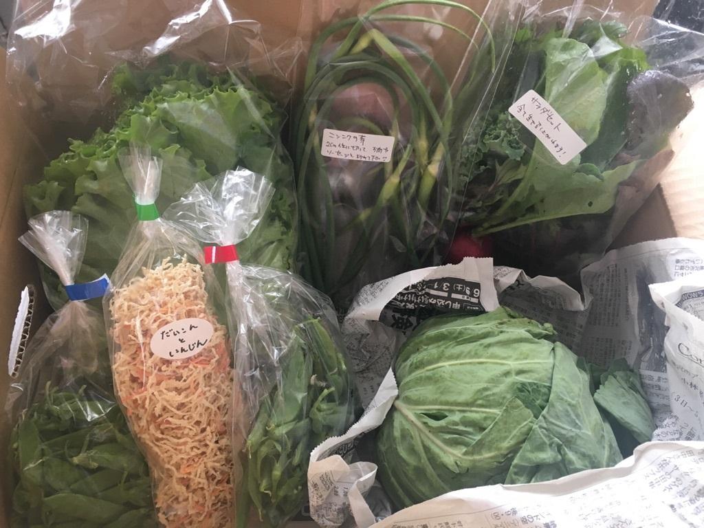青空農園さん 地元相模原のお野菜